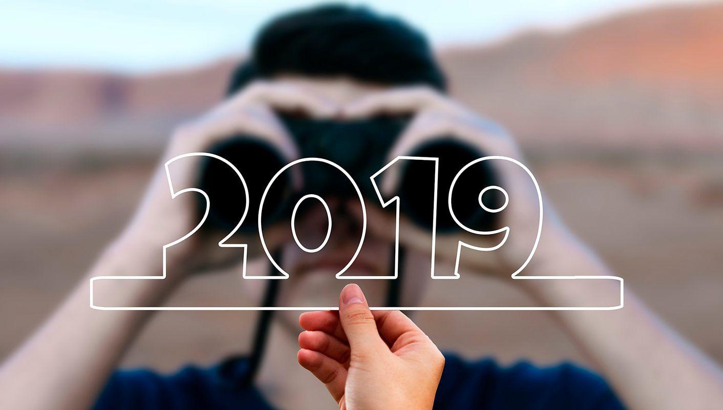 The 2019 year summary